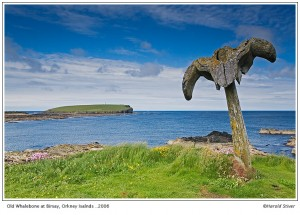 The Whalebone at Birsay, Orkney Isles